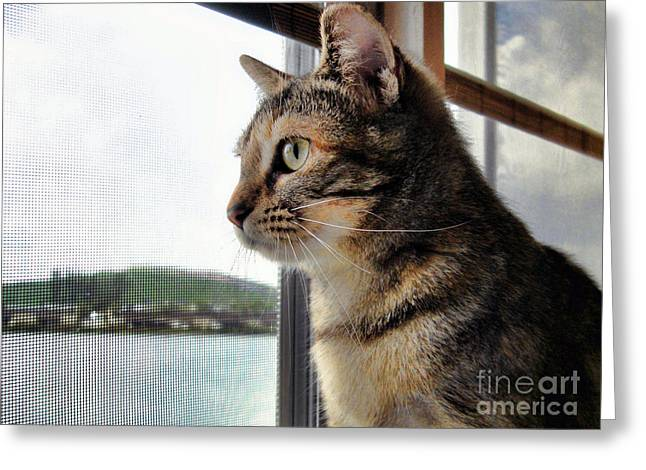 Emma Again Greeting Card