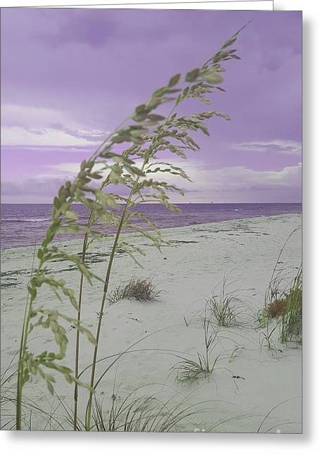 Emma Kate's Purple Beach Greeting Card