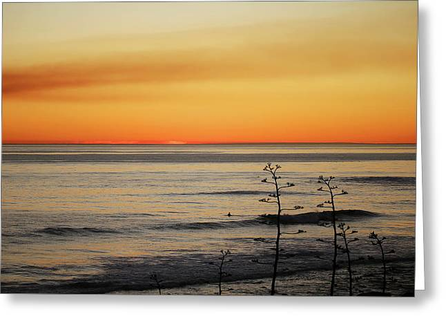 Emma Woods State Beach On The Rincon Greeting Card