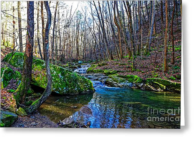 Emory Gap Branch Greeting Card by Paul Mashburn
