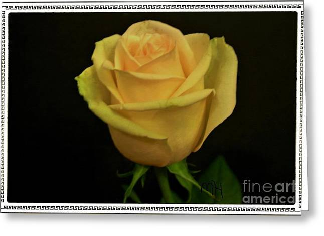 Greeting Card featuring the photograph Empress Rose by Marsha Heiken