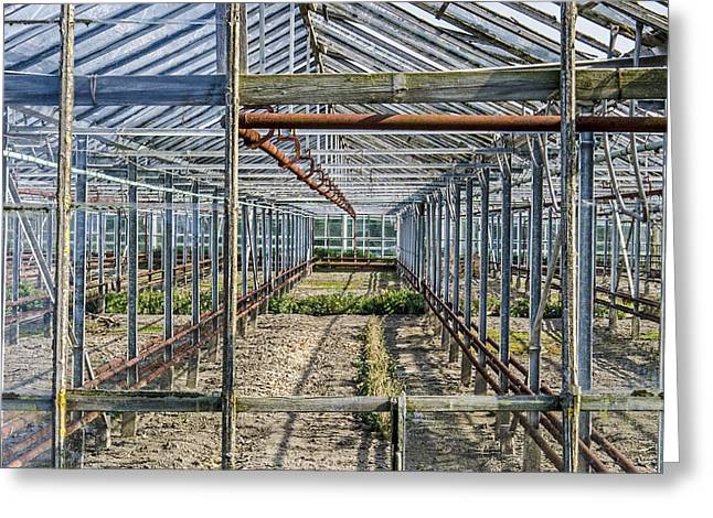 Empty Greenhouse Greeting Card