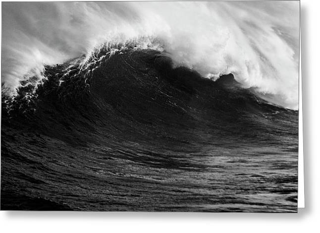 Greeting Card featuring the photograph Empty Jaws Black And White by Brad Scott