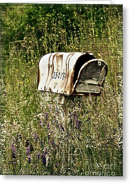 Empty Mailbox At 35476 Greeting Card