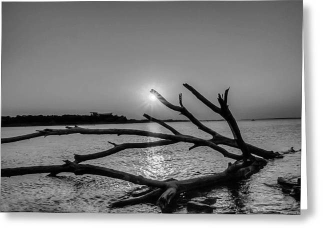 Empty Sunset Greeting Card by Dado Molina