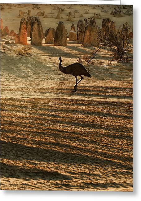 Emu Terrain Greeting Card by Heather Thorning