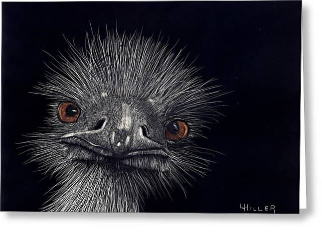 Emus In The Morning Greeting Card by Linda Hiller