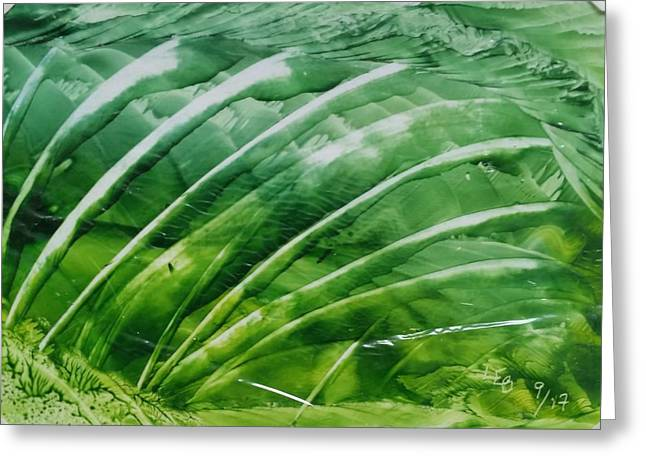 Encaustic Abstract Green Fan Foliage Greeting Card