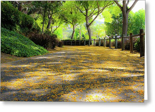 Enchanted Path Greeting Card