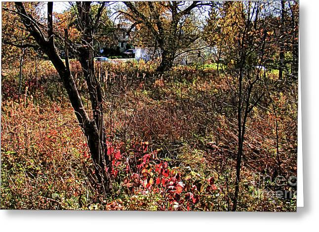 Enchanted Autumn Scene Greeting Card by Isaiah Moore