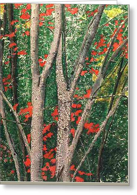 Enchanted Birches Greeting Card