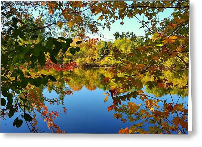 Greeting Card featuring the photograph Enchanted Fall by Valentino Visentini