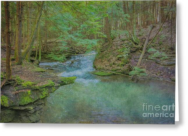 Greeting Card featuring the digital art Enchanted Forest One by Randy Steele