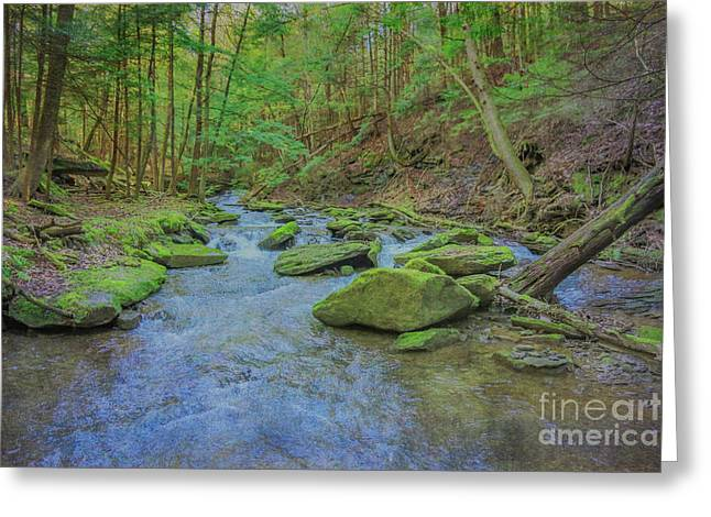Greeting Card featuring the digital art Enchanted Forest Three by Randy Steele