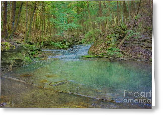 Greeting Card featuring the digital art Enchanted Forest Two by Randy Steele