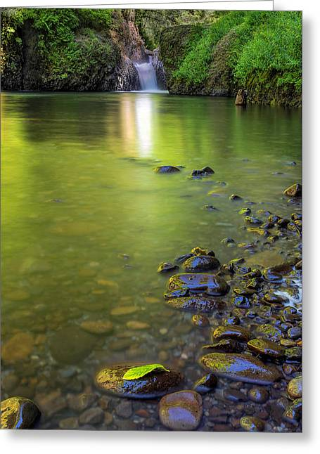 Enchanted Gorge Reflection Greeting Card by David Gn