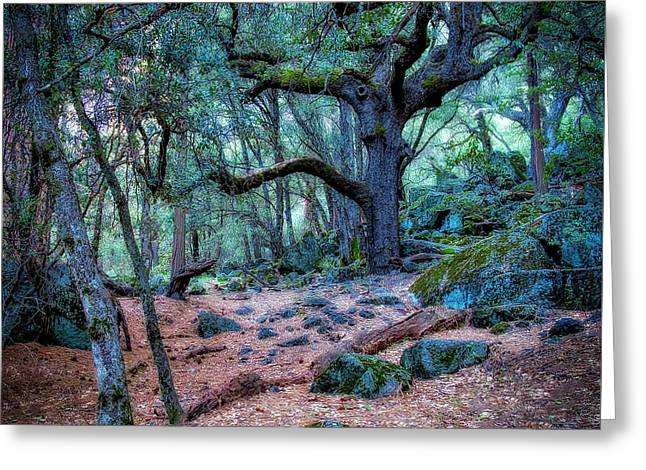 Enchanted Greeting Card by Jerry Golab