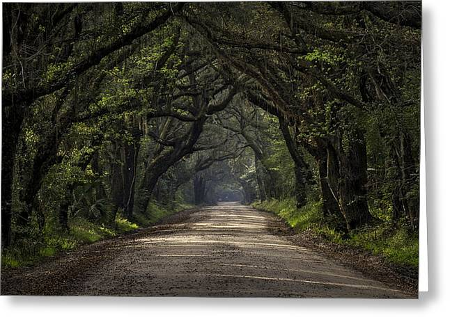 Enchanted Greeting Card by Michael Donahue
