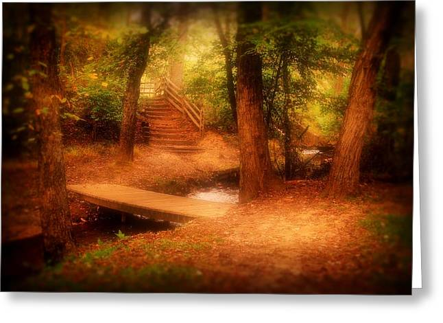 Enchanted Path - Allaire State Park Greeting Card by Angie Tirado