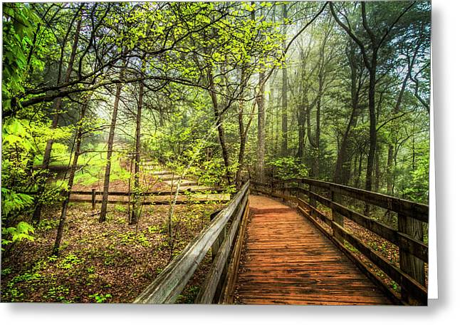 Enchanted Trail In The Forest Greeting Card by Debra and Dave Vanderlaan