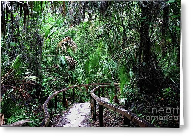 Greeting Card featuring the photograph Enchanted Walk by Gary Wonning