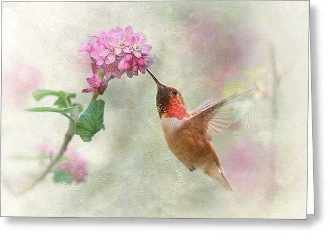 Greeting Card featuring the photograph Enchantment In The Garden by Angie Vogel
