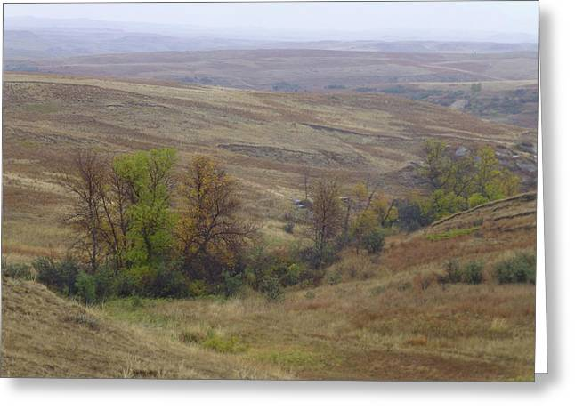 Enchantment Of The September Grasslands Greeting Card