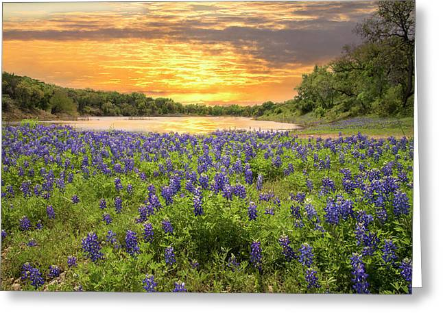End Of A Bluebonnet Day Greeting Card