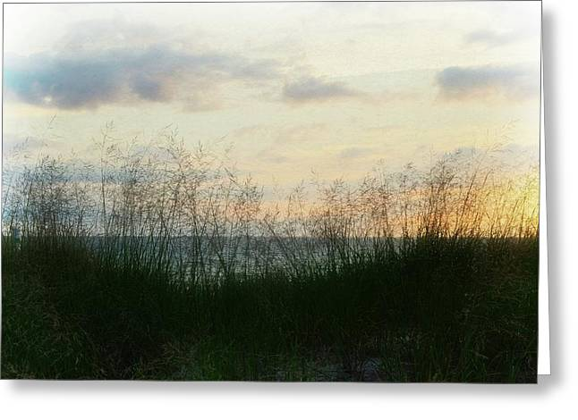 Greeting Card featuring the photograph End Of Day At Pentwater by Michelle Calkins