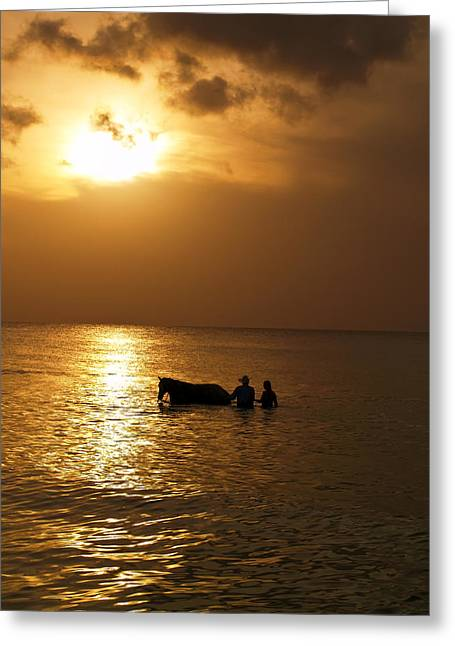 End Of The Day Greeting Card by Linda Morland