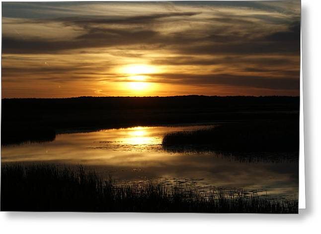 Greeting Card featuring the photograph End Of The Day by Ron Read
