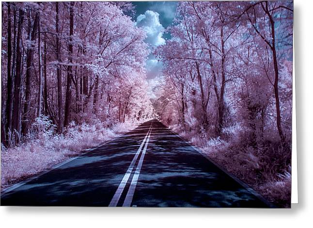 Greeting Card featuring the photograph End Of The Road by Louis Ferreira