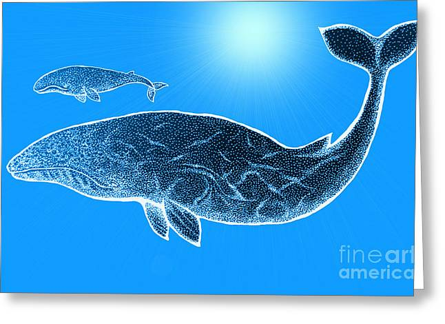 Sea Animals Mixed Media Greeting Cards - Endangered Gray Whales Greeting Card by Nick Gustafson