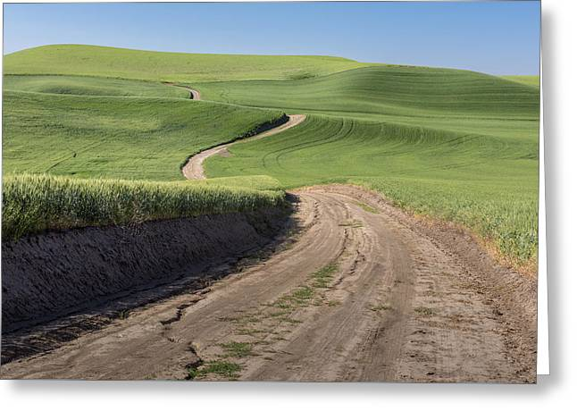 Endless Roads Greeting Card by Jon Glaser