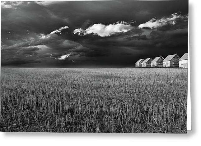 Greeting Card featuring the photograph Endless Sky by John Poon