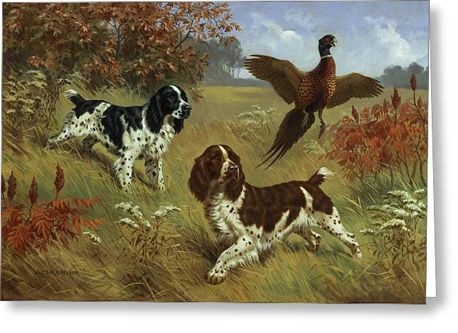 Fear Greeting Cards - Energetic English Springer Spaniels Greeting Card by Walter A. Weber