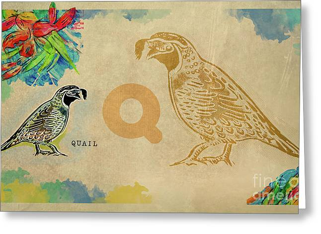 Greeting Card featuring the drawing English Alphabet , Quail by Ariadna De Raadt