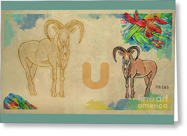 Greeting Card featuring the drawing English Alphabet , Urial  by Ariadna De Raadt