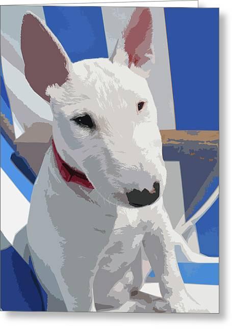 English Bull Terrier Greeting Card