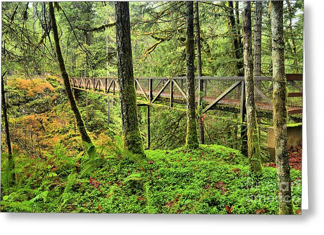 Englishman River Bridge Greeting Card