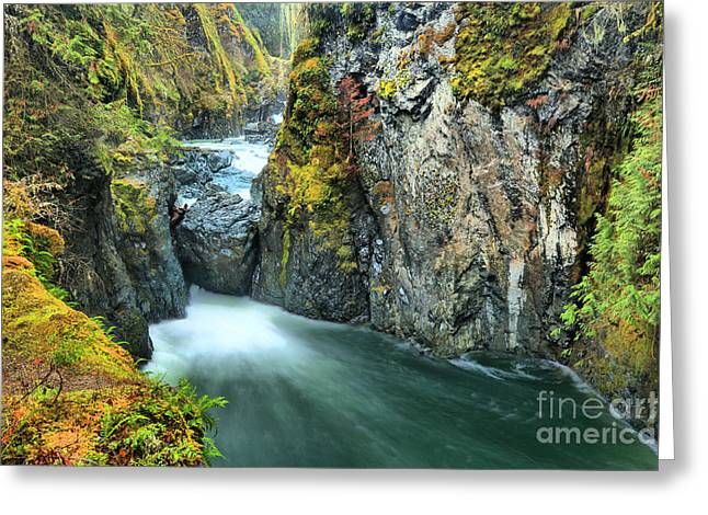 Englishman River Falls Bc Greeting Card