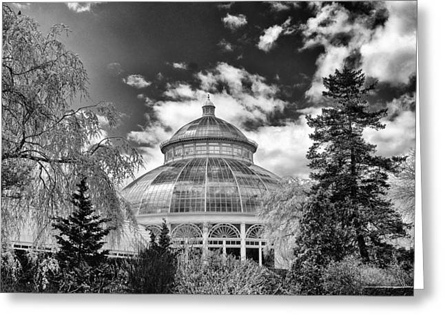 Enid J, Haupt Conservatory Greeting Card by Jessica Jenney