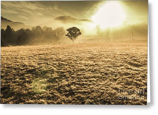 Enigmatic Grassland Greeting Card by Jorgo Photography - Wall Art Gallery