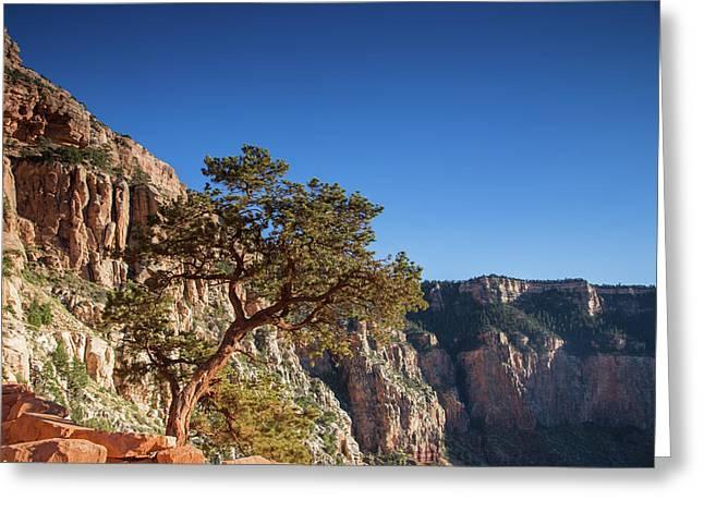 Enjoying The Canyon Greeting Card by Kunal Mehra