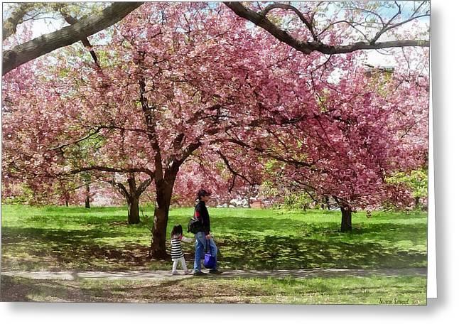 Enjoying The Cherry Trees Greeting Card