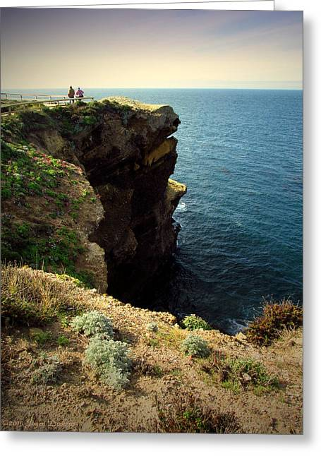 Enjoying The View At Point Lobos Greeting Card by Joyce Dickens