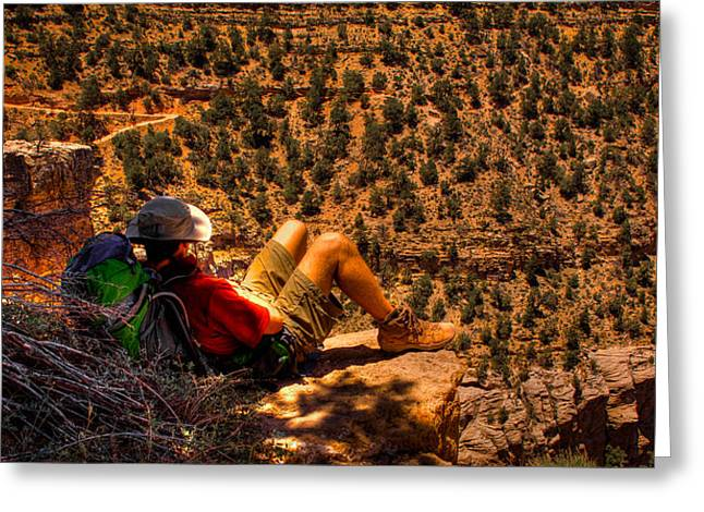 Enjoying The View Greeting Card by David Patterson