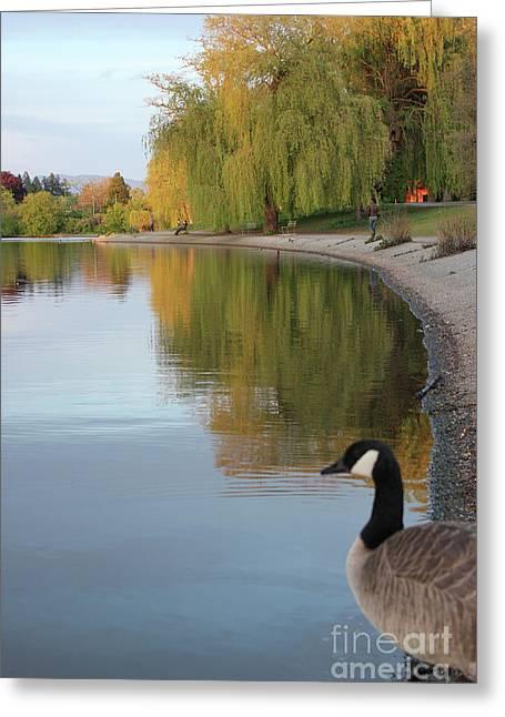 Enjoying The View Greeting Card by Wilko Van de Kamp