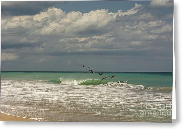 Enjoying The Waves Greeting Card