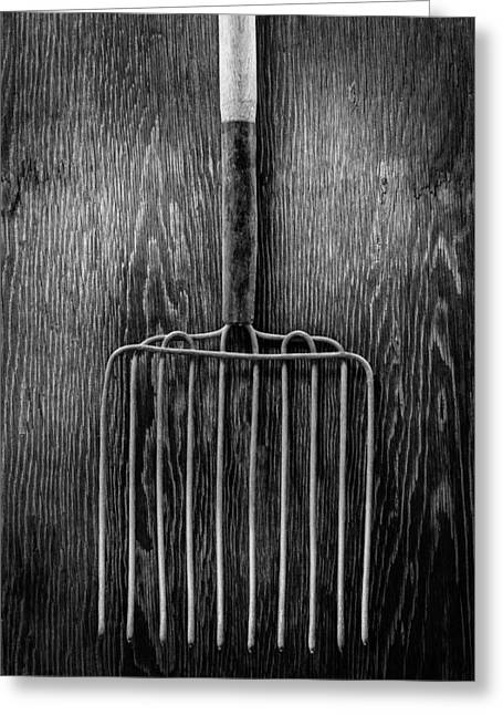 Ensilage Fork I Greeting Card by YoPedro